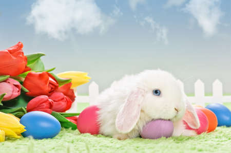 white baby rabbit with flowers and easter eggs on grass with blue sky