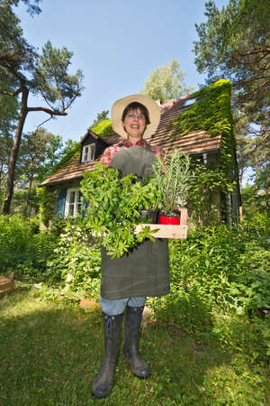 woodruff: a woman in front of her house in the garden carrying a basket with lots of herbs, wearing a hat and an apron
