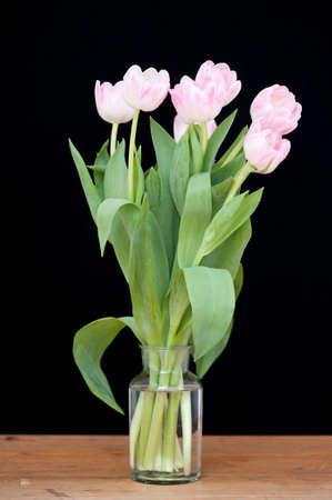 wasser: rosa Tulpen in einer Vase vor schwarzem Hintergrund