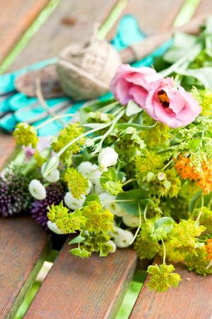 pflanzen: Blumen zum eintopfen im Garten Stock Photo