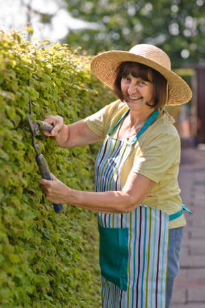 home protection: woman cutting the hedge in the garden, summer time