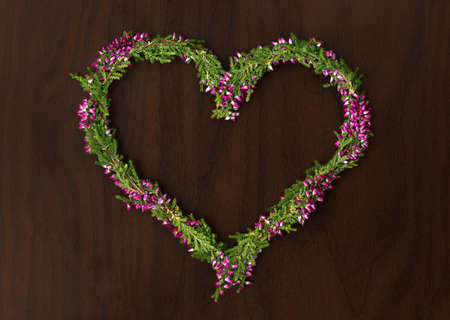 erica: heart shape from erica flowers on a dark wooden background Stock Photo