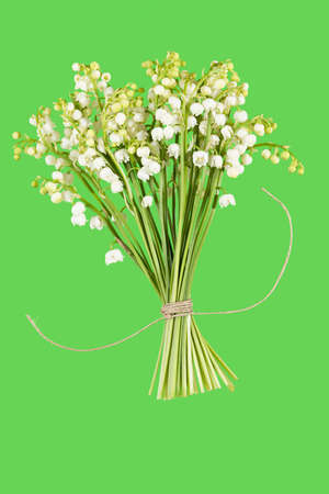 a bouquet of Lilies of the Valey on a green background
