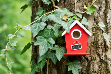 mr: a red birdhouse hanging on a tree in the garden with a sign saying Mr. & Mrs.