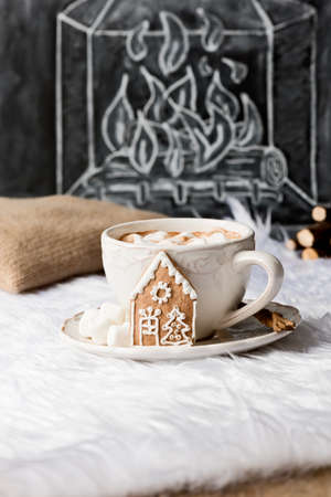 hot: hot chocolate with christmas decoration