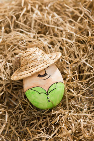 easter egg lies on hay