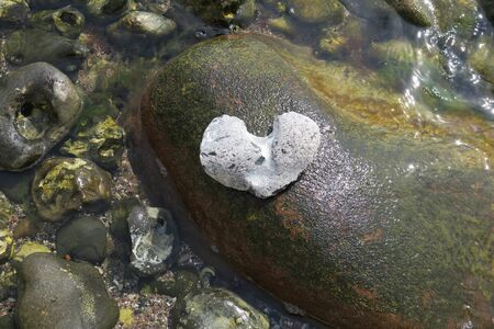 Heart shaped stone on rock in the water