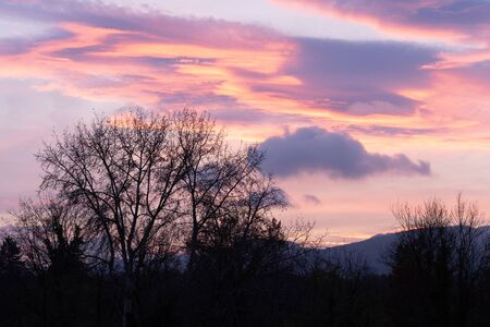 Dramatic sunset with pink clouds over bar trees and hills in wintertime without snow. Pictures unprocessed and original. In Switzerland.