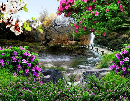 strumień: Cztery pory roku Zdjęcie Seryjne