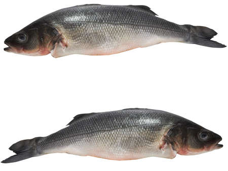 seabass ready to cooking Stock Photo - 12416567