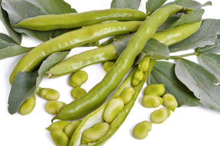 shelling: beans with fresh leaves from the orchard to the consumer