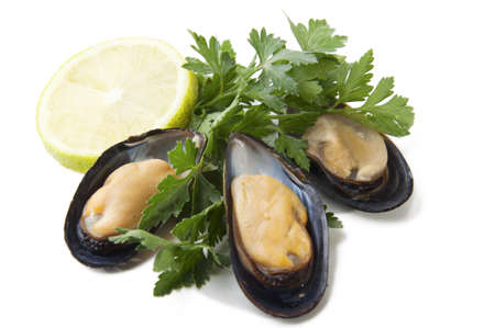 raw mussels with parsley and lemon on a white background Stock Photo