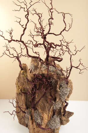 rooted: tree rooted in copper on olive handmade Stock Photo