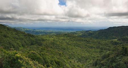 indies: Grenada island - Grand Etang National Park - Atlantic coast
