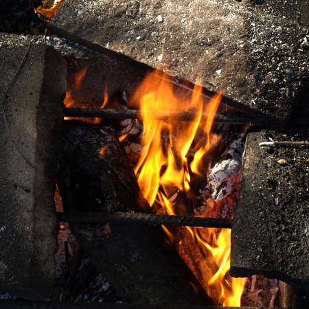 broiling: Barbecue BBQ