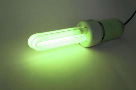 Compact fluorescent light bulb ecological low carbon - Green light of approval