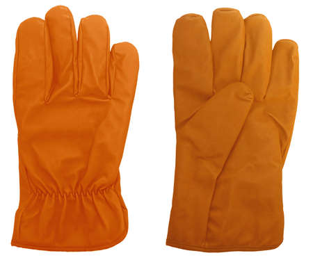 Isolated gloves personal protective equipment Stock Photo - 4009715