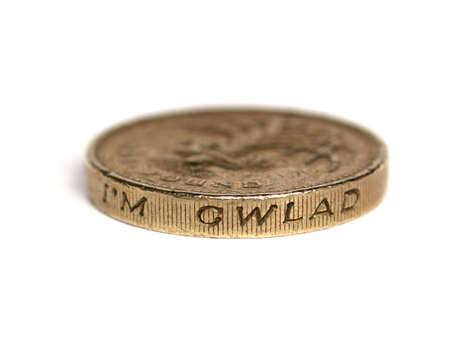 Detail of British One Pound coin (UK currency) Stock Photo - 5073381