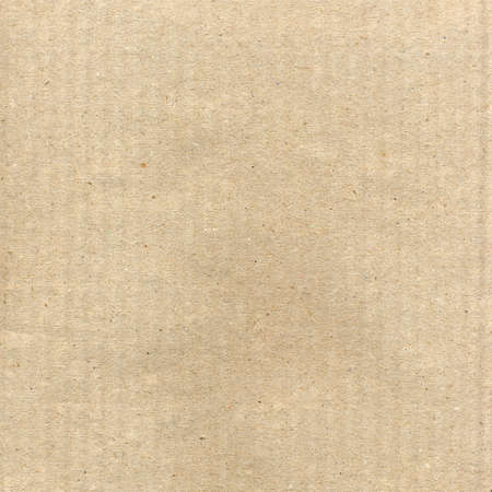 Brown corrugated cardboard sheet useful as a background Stock Photo - 5151650
