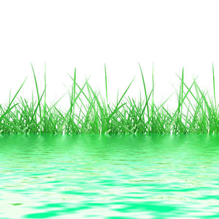 Illustration of green meadow grass reflected on water, over white background with copy space Stock Illustration - 5966634