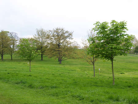 Primrose Hill park in London, England, UK Stock Photo - 7324125