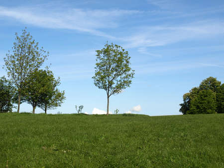 Primrose Hill park in London, England, UK Stock Photo - 7344297