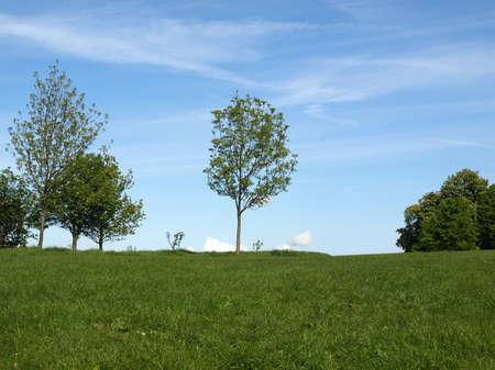 Primrose Hill park in London, England, UK Stock Photo - 7344297