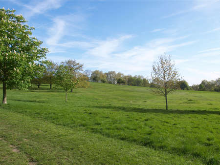 Primrose Hill park in London, England, UK Stock Photo - 7344460