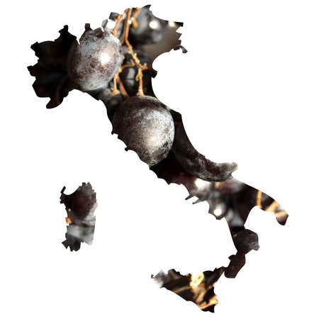 typical: Typical italian food in Italy map illustration