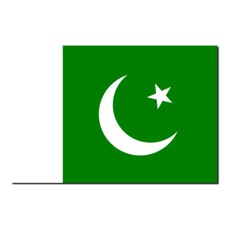 flag of pakistan: The national flag of Pakistan - with shadow over white background