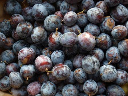 ciruela pasa: Detalle de frutas de ciruela pasa - comida vegetariana sana - �tiles como fondo