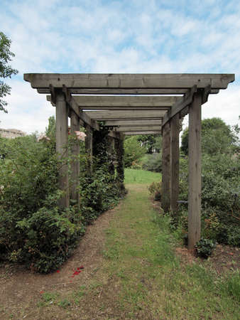 pergola: A pergola in a  garden forming a shaded walkway, passageway or sitting area Stock Photo