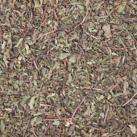 mentha: Detalle de las hojas de menta secas (Mentha piperita)