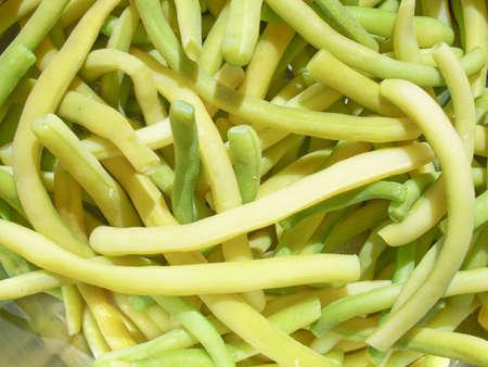 common bean: Common navy bean vegetable aka Phaseolus vulgaris