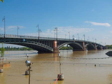 rhein: Flood or River Rhein in Mainz in Germany