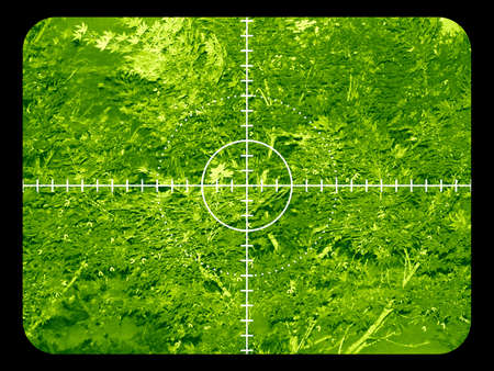 Infrared night view of a target in a forest