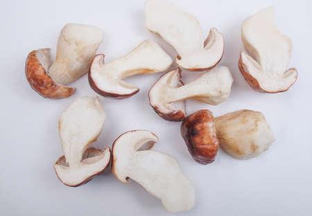cep: Boletus edulis aka penny bun or porcino or cep