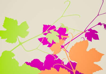 vitis: Retro looking Vector illustration of grape vine leaves