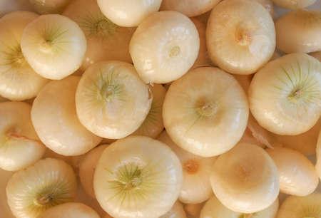 known: Onion (Allium cepa) also known as garden or bulb onion Stock Photo