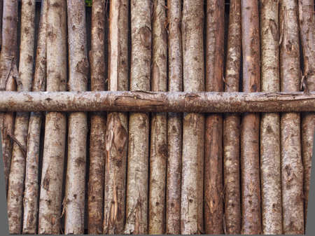 Medieval palisade stakewall fence wall made from wooden stakes or tree trunks