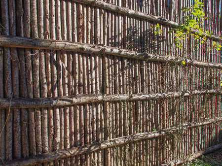 palisade: Medieval palisade stakewall fence wall made from wooden stakes or tree trunks used as a defensive structure