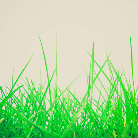 greem: Vintage looking Greem grass meadow useful as a background