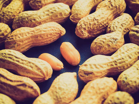 pygmy nuts: Vintage looking Peanut dry fruit or groundnut (Arachis hypogaea) beans - useful as a background