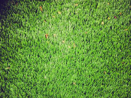 prato sintetico: Vintage guardando verde artificiale prato in erba sintetica prato utile come sfondo Archivio Fotografico