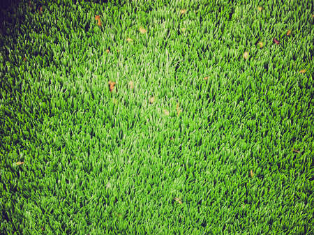 Vintage looking Green artificial synthetic grass lawn meadow useful as a background Stock Photo