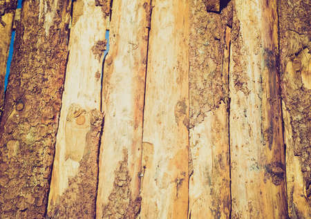 Vintage looking Old wood logs or plank board background photo