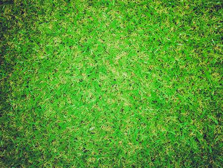 pasto sintetico: Vintage que mira la hierba sint�tica verde �til como backgroun