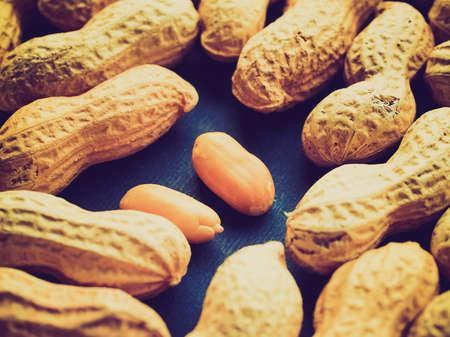 pygmy nuts: Vintage looking Peanut dry fruit or groundnut (Arachis hypogaea) beans  Stock Photo