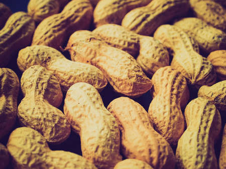 pygmy nuts: Vintage looking Peanut dry fruit or groundnut (Arachis hypogaea) beans  Stock Photo