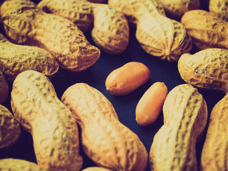 earthnuts: Vintage looking Peanut dry fruit or groundnut (Arachis hypogaea) beans - useful as a background